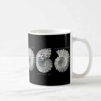 Ammonites Basic White Mug