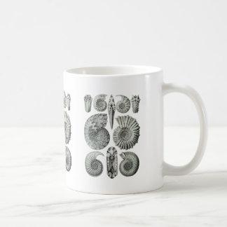 Ammonites Coffee Mugs