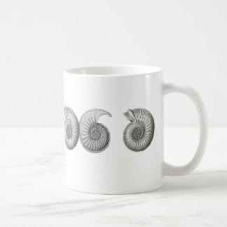 Ammonites Mugs
