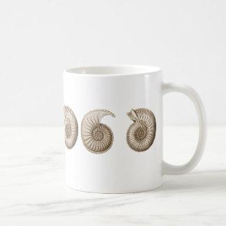 Ammonites Mug