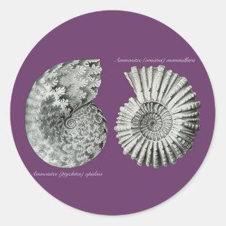 Ammonites Round Stickers