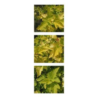 Among the foliage. Shades of yellow Photo Print