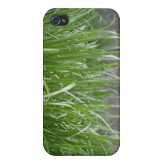 Among the Grass iPhone 4 Cover