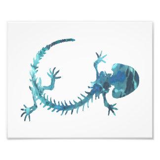 Amphibian Skeleton Photo Art