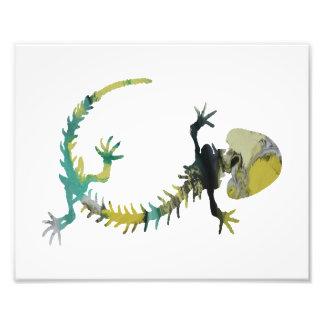 Amphibian Skeleton Photographic Print