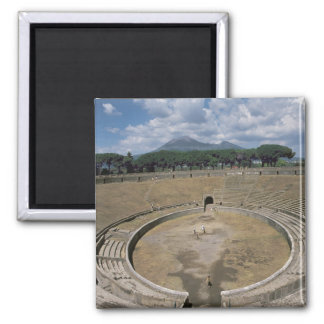 Amphitheatre begun c 80 BC Fridge Magnet