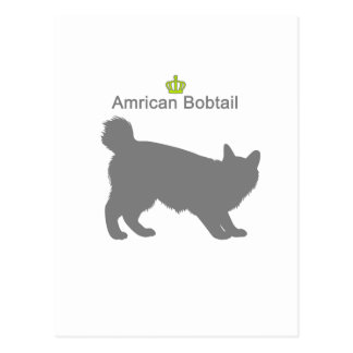 Amrican Bobtail g5 Postcard