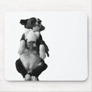 Amstaff range - Vogue Mouse Pad