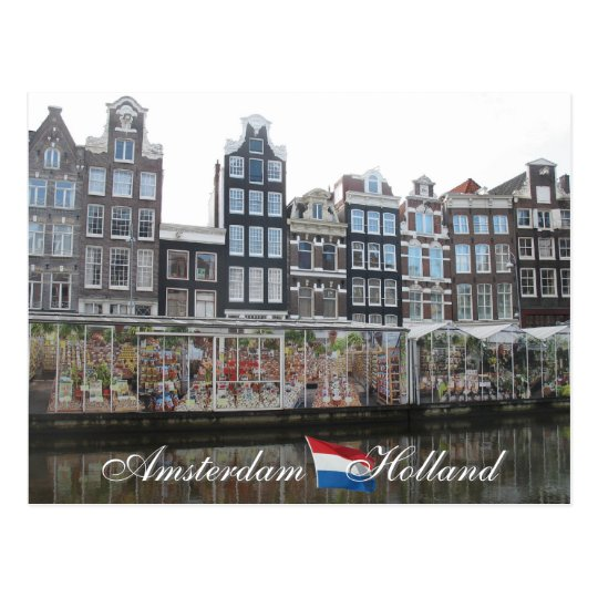 Amsterdam Flower Market Holland Postcard