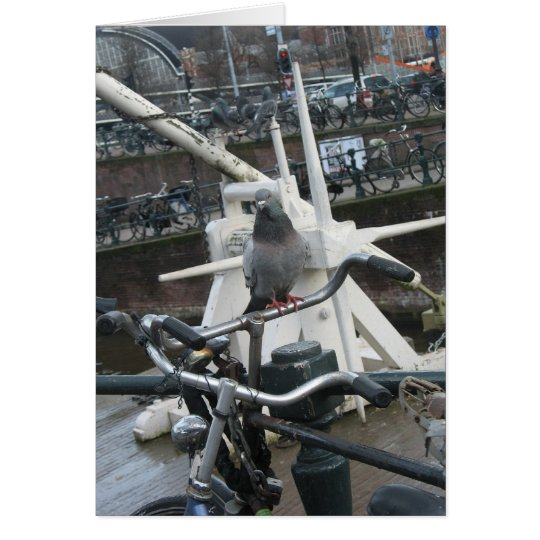 Amsterdam Pigeon(s) and Bike(s) Card
