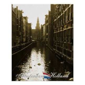Amsterdam Swans in Canal Cityscape Poster
