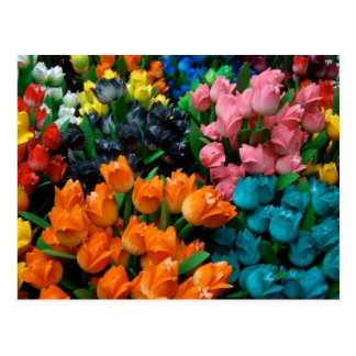 Amsterdam Tulips Postcard