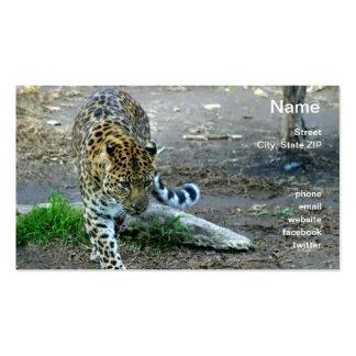 Amur Leopard Pack Of Standard Business Cards