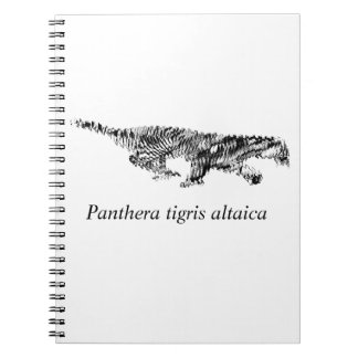 Amur Tiger#2 Notebooks