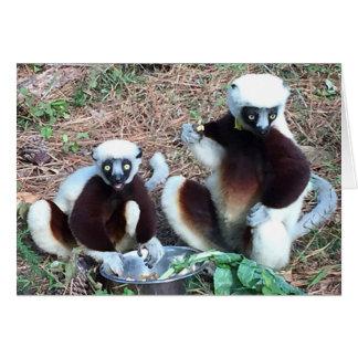 Amusing Lemurs Birthday Card