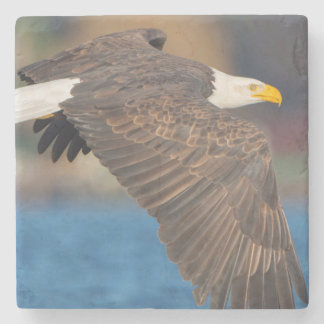 An adult Bald Eagle flies low over water Stone Coaster