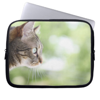An adult tabby cat staring out of a window laptop sleeve