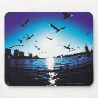 An aerial fisheye lens view of Tokyo Bay, Japan Mouse Pad