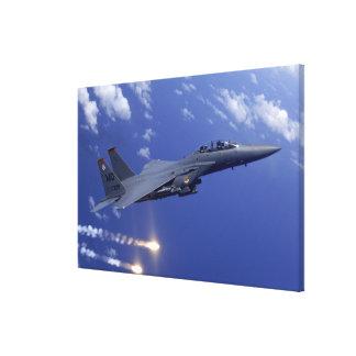An Air Force F-15E Strike Eagle Canvas Print