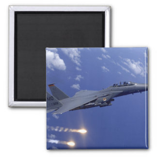 An Air Force F-15E Strike Eagle Magnet