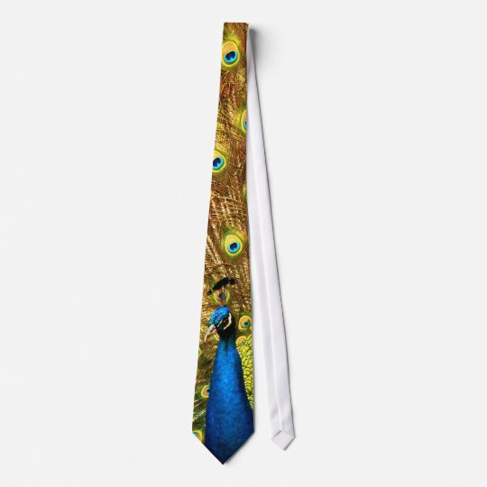 An Amazing Peacock Tie! Click on this one!!