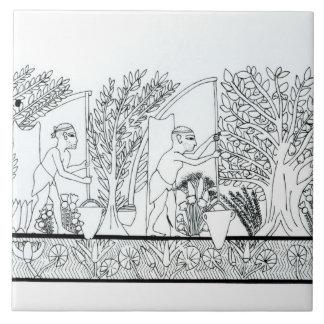 An ancient Egyptian garden (engraving) (b/w photo) Tile