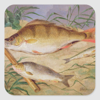 An Angler's Catch of Coarse Fish (oil on panel) Square Sticker