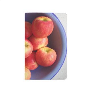 An Apple Journal A Day