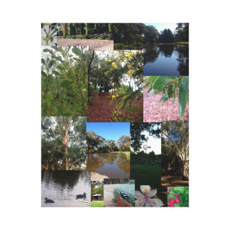 An Australian Garden _ Wrapped Canvas Stretched Canvas Print
