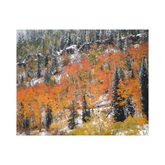 An Autumn Snow Stretched Canvas Print