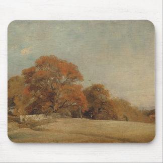 An Autumnal Landscape at East Bergholt, c.1805-08 Mouse Pad