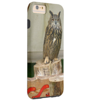 An eagle owl!