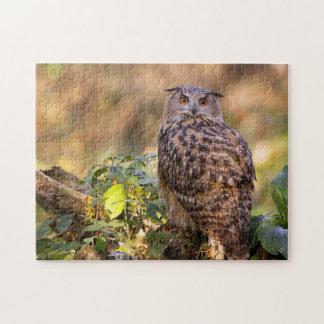 An Eagle Owl Jigsaw Puzzle