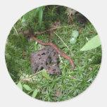 An Earthworm Sticker