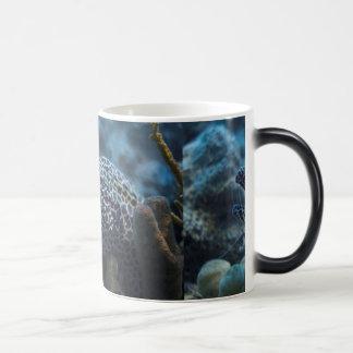 An Eel And A Shrimp Mug