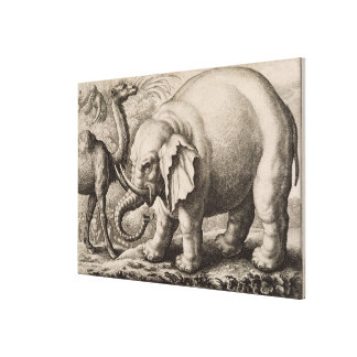 An Elephant and a Camel, engraved by Wenceslaus Ho Canvas Print
