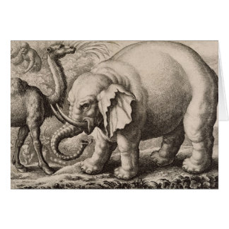 An Elephant and a Camel, engraved by Wenceslaus Ho Card