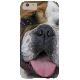 An english bulldog in Belgium Barely There iPhone 6 Plus Case