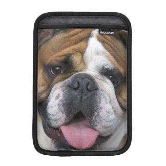 An english bulldog in Belgium. iPad Mini Sleeve