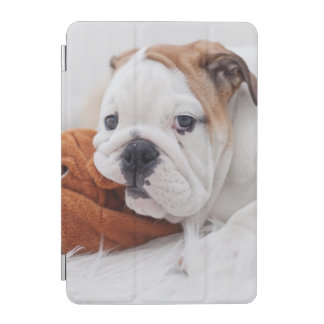An English Bulldog Puppy Playing With A Bulldog iPad Mini Cover
