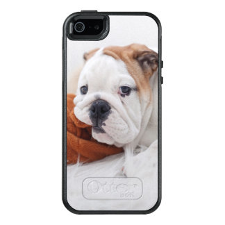 An English Bulldog Puppy Playing With A Bulldog OtterBox iPhone 5/5s/SE Case