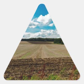 An English Sky Triangle Sticker