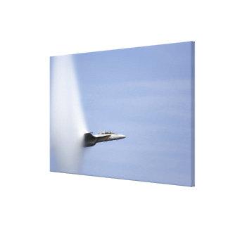 An F/A-18E Super Hornet reaches the speed of so Canvas Print