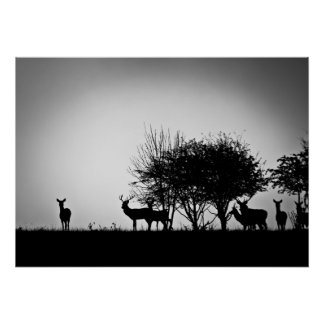 An image of some deer in the morning mist poster