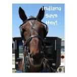 An Indiana Hey! Postcard