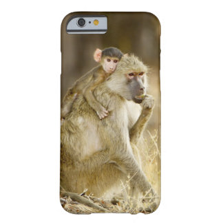An infant Yellow Baboon(Papio Barely There iPhone 6 Case