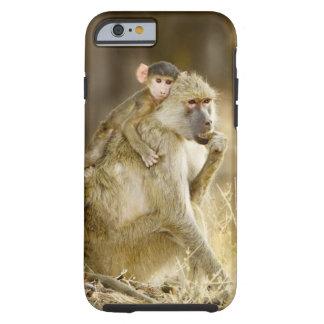An infant Yellow Baboon(Papio Tough iPhone 6 Case