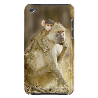 An infant Yellow Baboon(Papio iPod Touch Cases