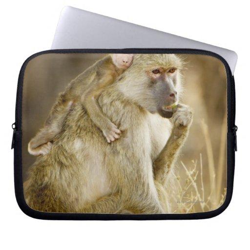 An infant Yellow Baboon(Papio Laptop Sleeve