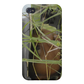 An infantryman with the Royal Thai Marines Case For The iPhone 4